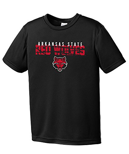 Arkansas State University Football (NCAA Arkansas State Indians Youth Boys Destroyed Short sleeve Polyester Competitor T-Shirt, Youth Medium,Black)
