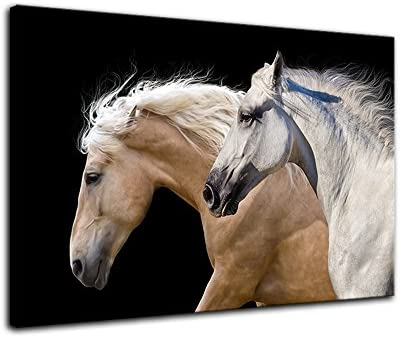 AMEMNY White and Brown Running Horses On Black Wall Art Background Canvas Paintings on Canvas Contemporary Wall Art Giclee Framed Artwork HD Printed Picture to Photo Decor
