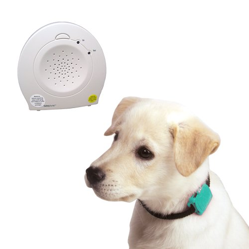 - Safety Turtle Pet Immersion Pool/Water Alarm Kit - Green