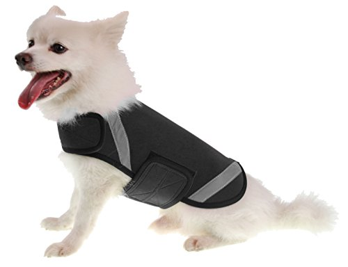 PET LIFE Extreme Neoprene Multi-Purpose Sporty Protective Shell Pet Dog Coat Jacket, X-Small, - Designer Wetsuits