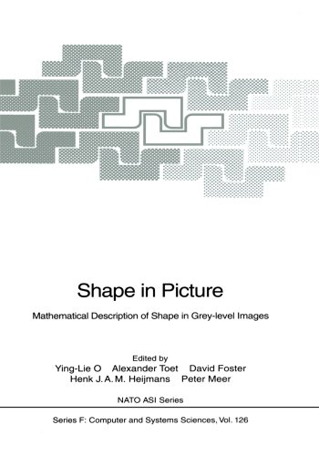 Shape in Picture: Mathematical Description of Shape in Grey-level Images (Nato ASI Subseries F:)