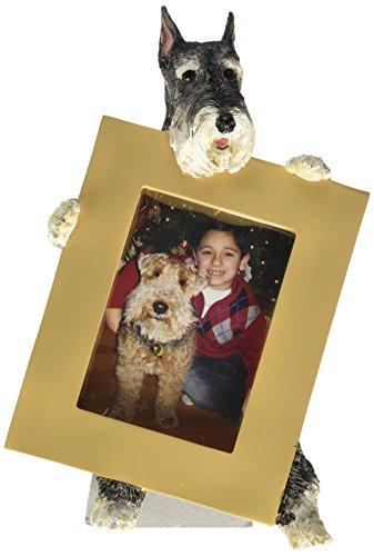 E&S Pets 35315-34 Small Dog Frame by E&S Pets