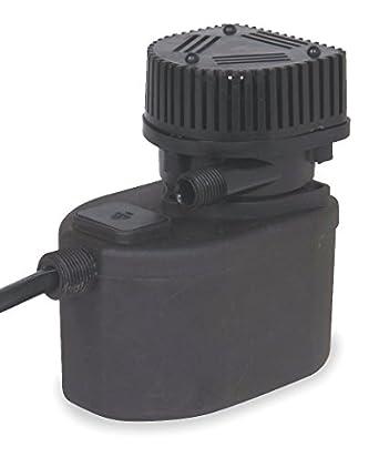 Dayton 2HNN3 Pump, Compact Submersible, 1/50 HP: Sump Pumps