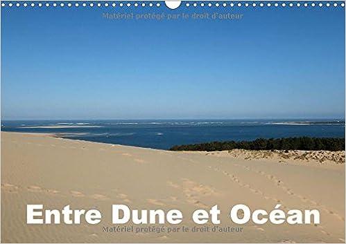 Entre Dune et Ocean 2017: Entre la Majestueuse Dune du Pilat et l'Ocean Atlantique (Calvendo Nature)
