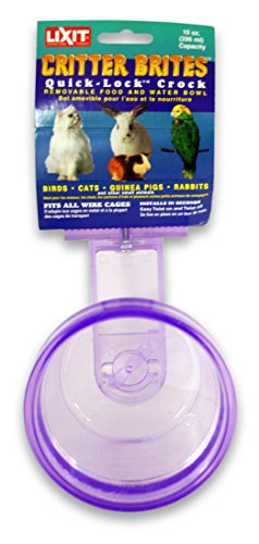 Lixit Corporation SLX0510 Critter Brites Small Animal Quick Lock Crock, 10-Ounce, Colors Vary (Cage Crock Carrier)