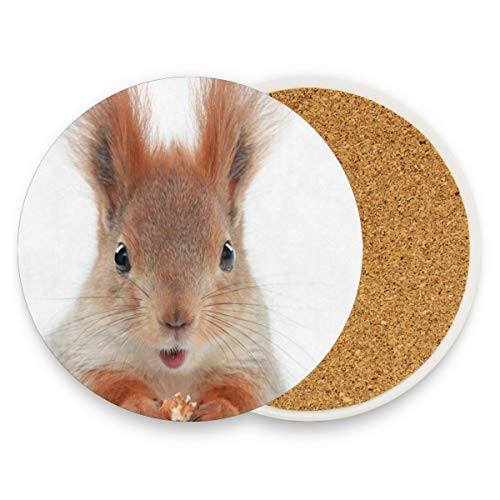 Little Squirrel Coasters, Protection For Granite, Glass, Soapstone, Sandstone, Marble, Stone Table - Perfect Wood Coasters,Round Cup Mat Pad For Home, Kitchen Or Bar 1 Piece ()