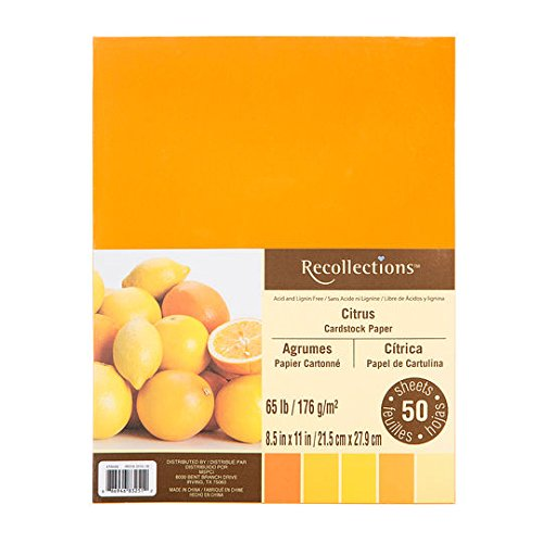 Recollections Citrus Cardstock Paper, 8.5
