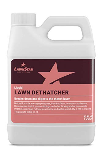 LawnStar Liquid Lawn Dethatcher (32 OZ) - Easy Alternative to Dethatch Rake & Mower - Digests Harmful Thatch Layer - Pair with Liquid Aerator - American Made