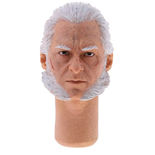 Figure 12' Wolverine (Jili Online 1/6 Male Head Sculpt Accessory for 12 inch Old Logan Action Figure The Wolverine)