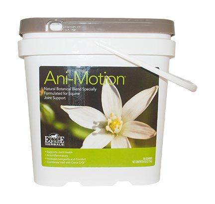 Ani Motion Equine Herbal Joint Blend (4-Pound) by Arenus
