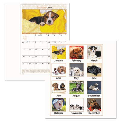 AT-A-GLANCE DMW16728 Puppies Monthly Wall Calendar, 15 1/2 x 22 3/4, 2016 (Photographic Monthly Calendar Wall Puppies)