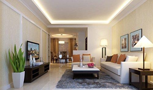 CVMORE® Lot de 3 LED Ampoules Standard 10W Culot E27 A60 2700K Blanc Chaud 810 Lm Consommés Équivalent à ampoule incandescente de 80W [Classe énergétique A+]
