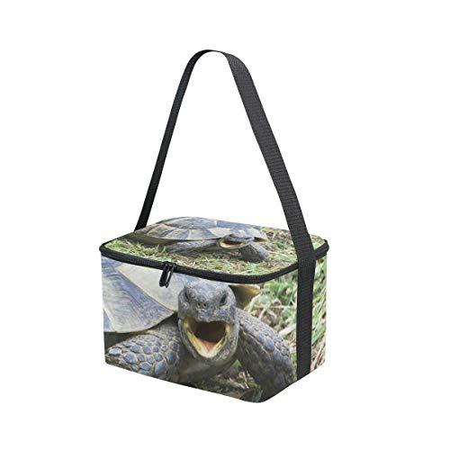 Greek Cooler Lunchbox Testudo Lunch Picnic Turtle Bag Shoulder Strap Ibera Graeca for qCWpABw