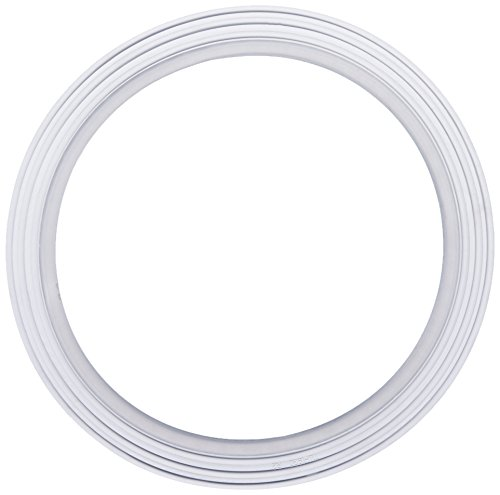 Waterway Plastics 806105124296 7111920 Collar Gasket use with clamp style