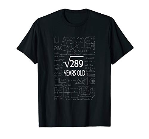17th Birthday Gift Tee, Square Root of 289: 17 Years Old