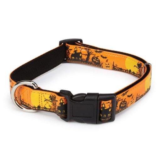 Casual Canine Polyester/Nylon Spooky Night Dog Collar, 10-16-Inch, Orange