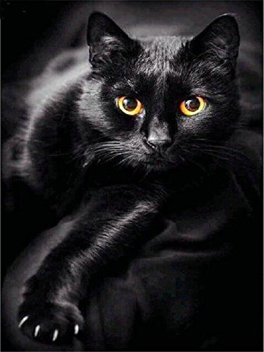 LIPHISFUN 5D DIY Diamond Painting Full Drill Square Resin Rhinestone Embroidery Unfinished Cross Stitch Home Decor Gift Black Cat(30x40cm) (Cat Cross Black Stitch)