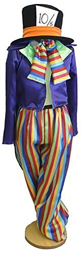 Panto-Fancy Dress-World Book Day-Wonderland-Carroll-Unisex MAD HATTER STRIPED - ALL AGES (TEEN)