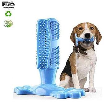 Volwco Cepillo De Dientes En Perro Jugar,Juguete para Masticar Limpieza De Higiene Dental Silicona Natural De Larga Duraci/ón No T/óxica Cuidado Oral para Mascotas