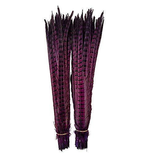 (wanjin 10PCS Purple Pheasant Feathers Pheasant Tails 20-22inch(50-55CM))