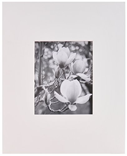 Artcare By Nielsen Bainbridge White 16x20 Pre-Cut Museum Quality Archival Picture Mat For 8x10 Photo