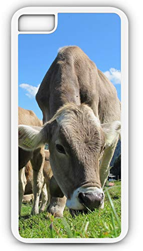 (iPhone 7 Case Cows Cow Austria Pasture Field Beef Sky Blue Customizable by TYD Designs in White Plastic Black Rubber Tough Case)