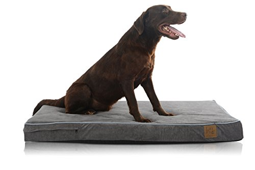 LaiFug Orthopedic Memory Foam Pet/Dog Bed with Durable Water Proof Liner and Removable Designer Washable Cover, 46'' L x 28'' W x 4'' H, Slate Grey (Orthopedic Bed Waterproof)