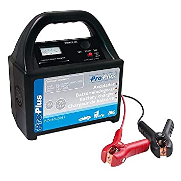 DeTec. Cargador de batería de Coche 12 V-24 V 15 Amp ...