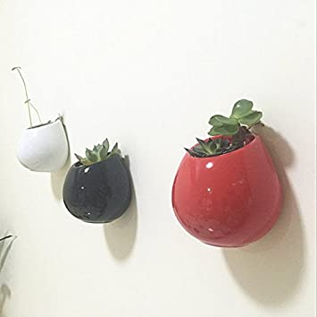 Amazon Newdreamworld Set Of 3 Ceramic Wall Vases Wall Mounted
