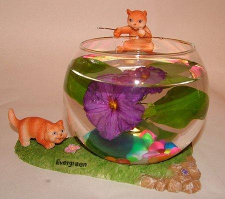 2 x pecera aquaglobez único Betta Fish Tank Acuario Tazón gato dice: Amazon.es: Productos para mascotas