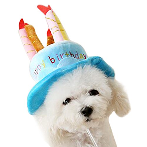 Alfie Pet by Petoga Couture - Pattie Birthday Hat Party Costume (for Small Dogs & Cats) - Color: Blue - Pet Food Dog Costume