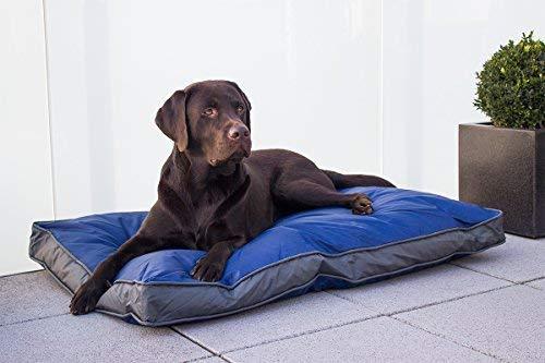 SAUERLAND Coussin d'extérieur pour chien Bleu 105x 67cm Matériau solide et imperméable Sonstige