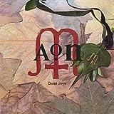 AON / Quiet Joys