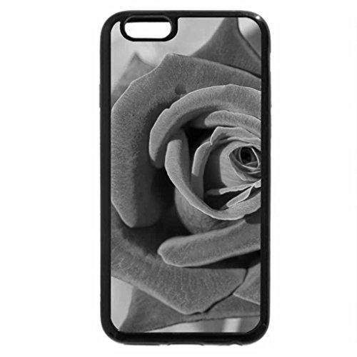 iPhone 6S Case, iPhone 6 Case (Black & White) - Beautiful velvet rose