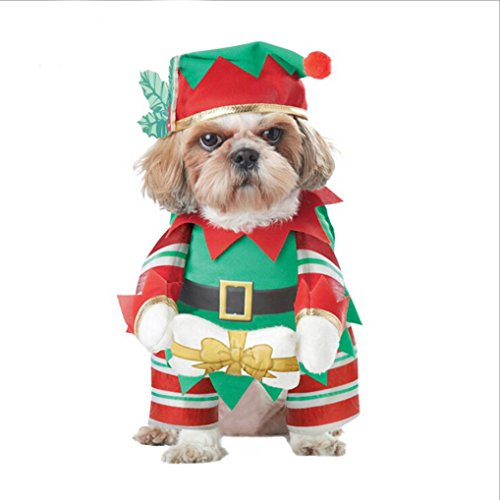AMA(T (Dog Christmas Outfit)