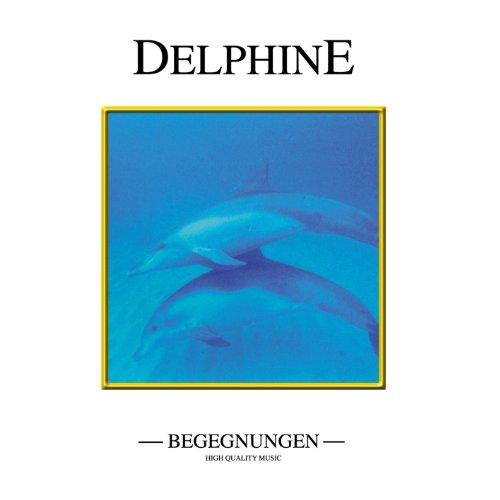 Dolphins - Sea world