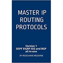 Master IP routing Protocols: Version 1 OSPF EIGRP ISIS and BGP all in-one