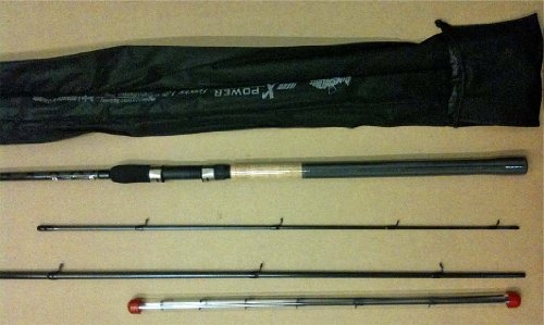 Dinsmores Canne à pêche robuste pour pêche au feeder noir - Noir