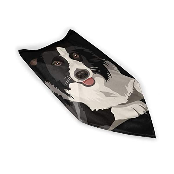 Border Collie Neck Gaiter Warmer Windproof Face Mask Scarf Outdoor Sports Mask 5