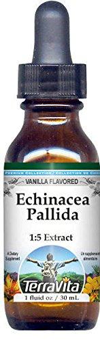 Echinacea Pallida Glycerite Liquid Extract (1:5) - Vanilla Flavored (1 oz, ZIN: 522414) - 3 Pack