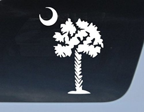 NI191 Palmetto Tree Vinyl Decal | 6