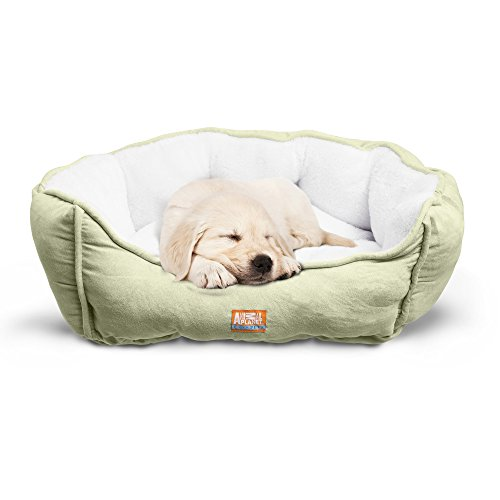 """Animal Planet Round Plush Micro Suede & Sherpa Bolster Pet Bed for Dogs & Cats, Puppies, and Small & Toy Breeds; Cuddly and Warm for Burrowing and Snuggling, Easy-to-Clean Surface 24""""x 17""""x 9"""" GREEN"""