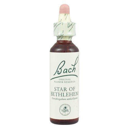 Bach Original Flower Remedies - Star of Bethlehem | 20ml by Bach Original Flower Remedies