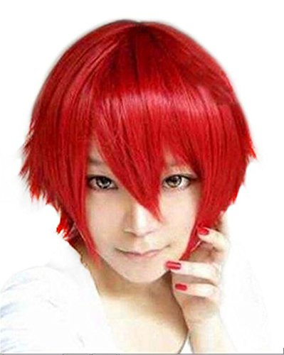 ATOZWIG Anime Cosplay Wig Short Straight Heat Resistant Synt