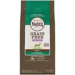 NUTRO Grain Free Small Bites Adult Pasture-Fed Lamb, Lentils and Sweet Potato Dry Dog Food 4 Pounds