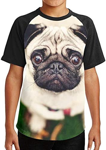 Pug Life Blue Youth Kids T Shirt 3D Printed Short Sleeve Crew Neck Tees Shirts for Boys Children