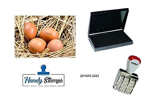 Amazon Egg Dater KIT