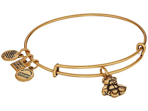 (Alex and Ani Women's Charity by Design Little Brown Bear Expandable Wire Bracelet Rafaelian Gold One Size)