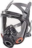 MSA 10083790 Advantage 4200 Series Full-Facepiece