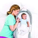Baby Delight Snuggle Nest Afterglow Infant